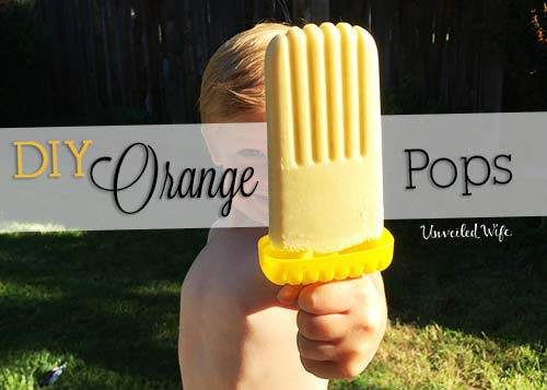 Summer Treat: Homemade Orange Ice Cream Pops!